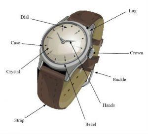 اجزا خارجی ساعت
